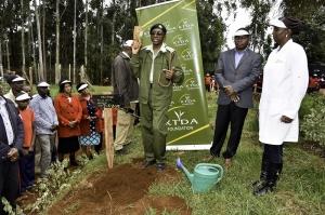 Adopt a fruit tree initiative